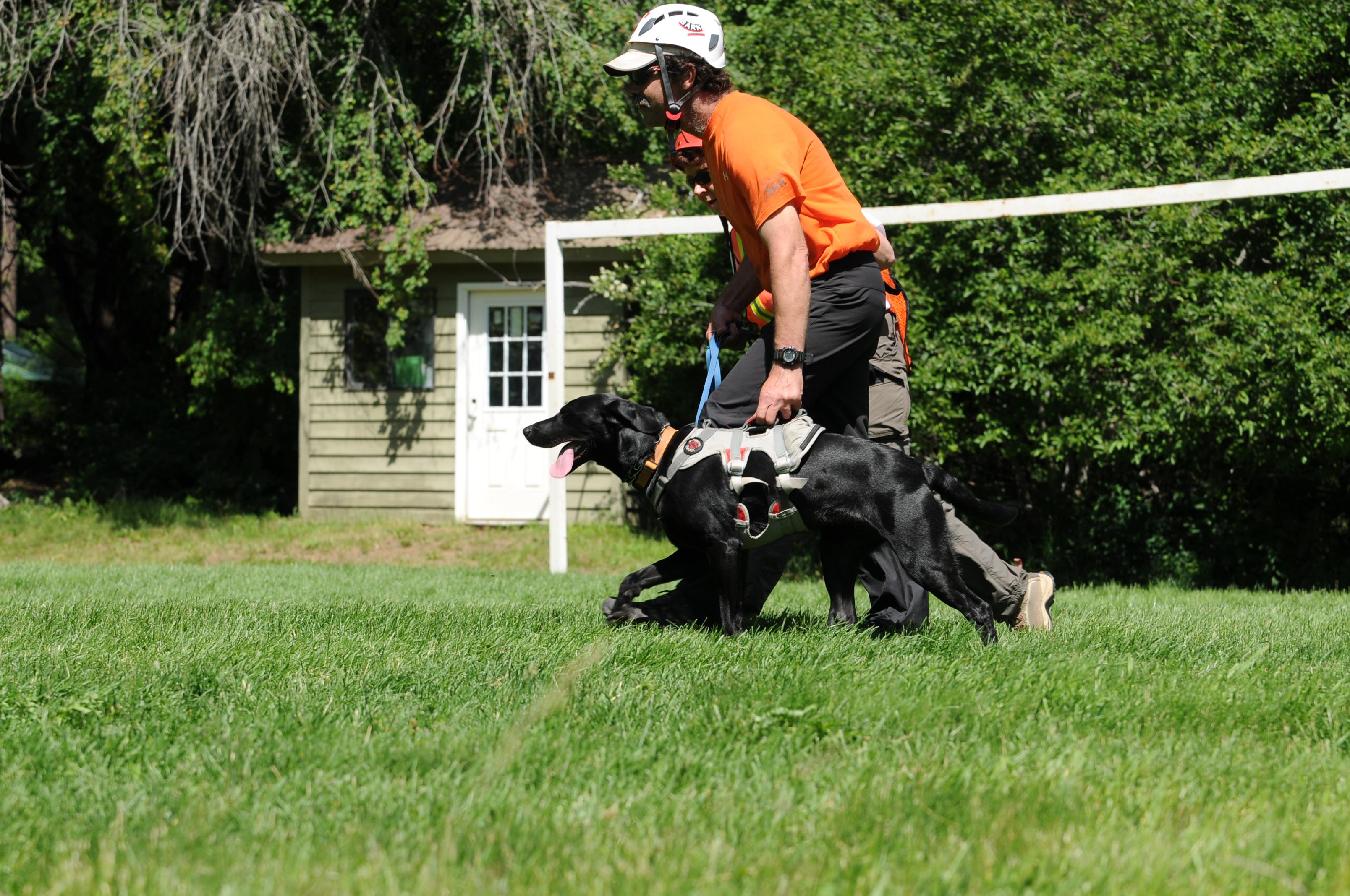 Intermountain Search Dogs