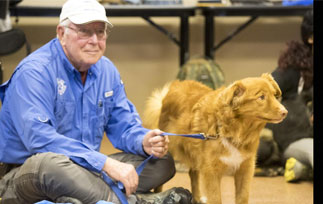 Canine First Aid Training